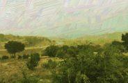 Patina Bluff